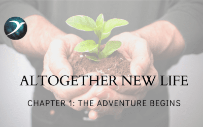Altogether New Life – Chapter 1: The Adventure Begins