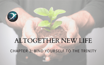 Altogether New Life – Chapter 3: Bind Yourself to the Trinity